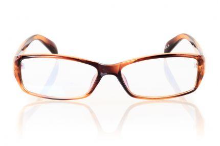 Очки Модель 5201