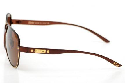 Очки Модель 9500