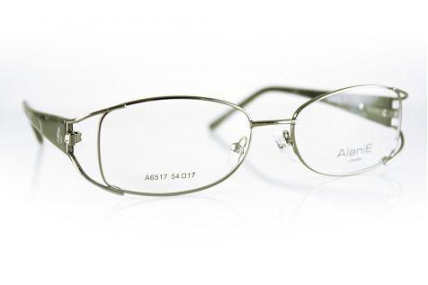 Очки Модель 4982