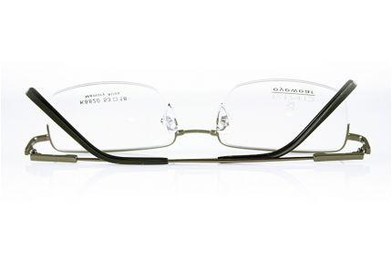 Очки Модель 5010